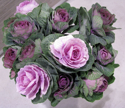 Sunday Flower Delivery on Kale  Cabbage Flowers  At Hanging Basket Florist Rockingham