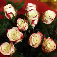 Two-Tone Rose Posy