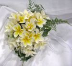 Bridesmaids Posy of Frangipani