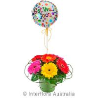 Gerberas and Balloon