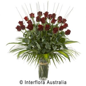 24 Red Roses with Vase